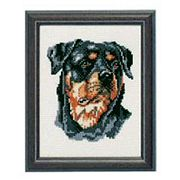 Pako Rottweiler Cross Stitch Kit