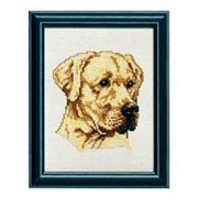Golden Labrador - Pako Cross Stitch Kit