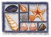Shells on Display - Pako Cross Stitch Kit