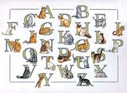 Pako Cat Alphabet Cross Stitch Kit