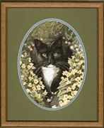 Heritage Black and White Cat Cross Stitch Kit
