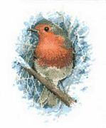 Robin Redbreast - Aida - Heritage Cross Stitch Kit