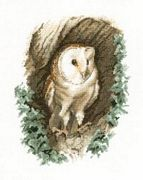 Barn Owl - Aida - Heritage Cross Stitch Kit