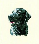 Chester - Aida - Heritage Cross Stitch Kit