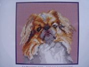 Japanese Spaniel - DMC Tapestry Kit