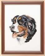 Pako Mountain Dog Cross Stitch Kit