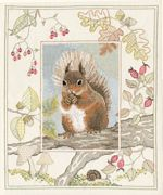 Derwentwater Designs Red Squirrel Cross Stitch Kit
