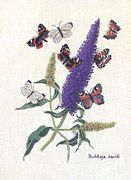 Eva Rosenstand Buddleia and Butterflies Cross Stitch Kit