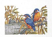 Kingfisher Pair - Eva Rosenstand Cross Stitch Kit