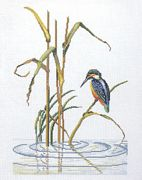 Eva Rosenstand Kingfisher Ripples Cross Stitch Kit