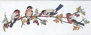 Bullfinch and Berries - Eva Rosenstand Cross Stitch Kit