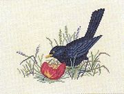 Blackbird - Eva Rosenstand Cross Stitch Kit