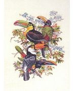 Toucan Quartet - Eva Rosenstand Cross Stitch Kit