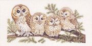 Barn Owl Family - Aida - Eva Rosenstand Cross Stitch Kit