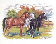 Eva Rosenstand Horse Trio Cross Stitch Kit