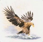 Eagle in Flight - Aida - Heritage Cross Stitch Kit
