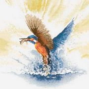 Kingfisher in Flight - Aida - Heritage Cross Stitch Kit