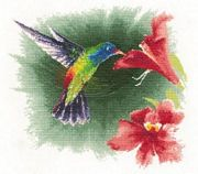 Hummingbird in Flight - Aida - Heritage Cross Stitch Kit