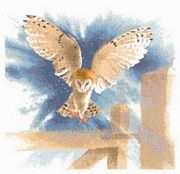Owl in Flight - Aida - Heritage Cross Stitch Kit