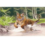 Tiger - Aida - Heritage Cross Stitch Kit