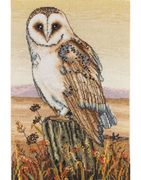 Anchor Owl Horizon Cross Stitch Kit
