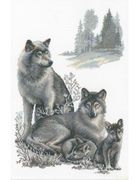 RIOLIS Wolves Cross Stitch Kit