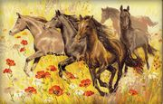 Horses - RIOLIS Cross Stitch Kit