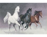 Wild Horses - Aida - Heritage Cross Stitch Kit