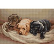 Three Puppies - Luca-S Cross Stitch Kit