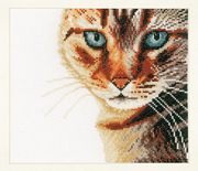 Tabby Cat - Evenweave - Lanarte Cross Stitch Kit