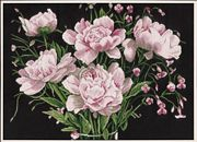 Lanarte Pink Roses Cross Stitch Kit