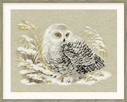 RIOLIS White Owl Cross Stitch Kit