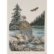 Sea Eagle - Aida - Permin Cross Stitch Kit