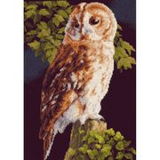 Lanarte Barn Owl Cross Stitch Kit
