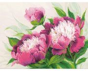 RIOLIS Pink Peonies Cross Stitch Kit