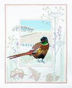 Derwentwater Designs Pheasant Cross Stitch Kit