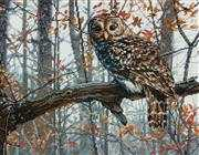 Dimensions Wise Owl Cross Stitch Kit