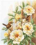 Vervaco Wrens on Roses Cross Stitch Kit
