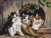 Luca-S Friendly Shelter Cross Stitch Kit