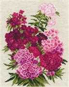 RIOLIS Sweet William Cross Stitch Kit