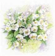 RIOLIS Watercolour Jasmine Cross Stitch Kit