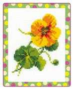 RIOLIS Nasturtium Cross Stitch Kit