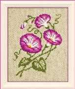 RIOLIS Morning Glory Cross Stitch Kit
