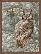 RIOLIS Eagle Owl Cross Stitch Kit
