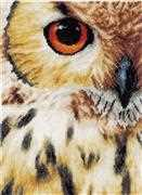 Lanarte Owl Cross Stitch Kit