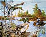 Mallards - Grafitec Tapestry Canvas