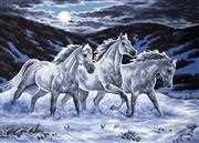 Midnight Stallions - Grafitec Tapestry Canvas