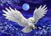 Moonlight Owl - Grafitec Tapestry Canvas