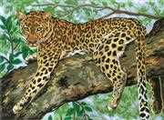 Lazing Leopard - Grafitec Tapestry Canvas