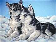 Husky Puppies - Grafitec Tapestry Canvas